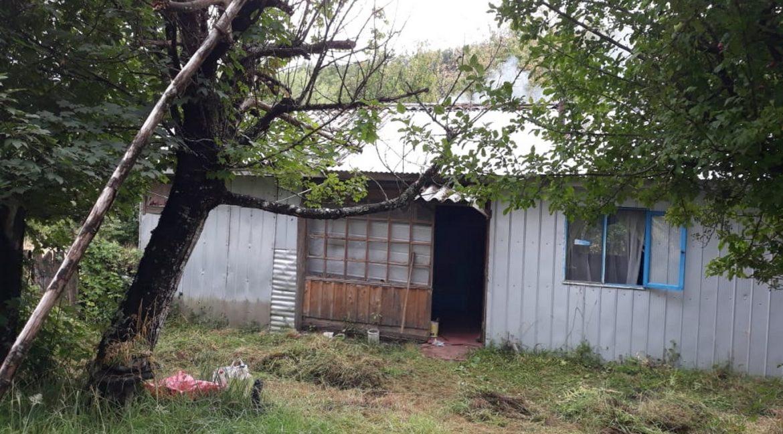 Parcela Curacautin IMG-20200305-WA0007 (Copiar) - copia