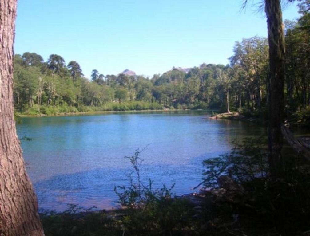 Hermoso Fundo en Melipeuco con Laguna